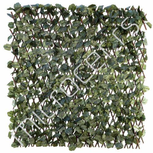 Veštačka živa ograda Bršljan list 1,0x2m